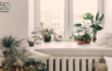 best air purifiers for home use