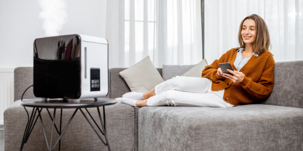 detailed-guide-on-air-purifier-vs-humidifier